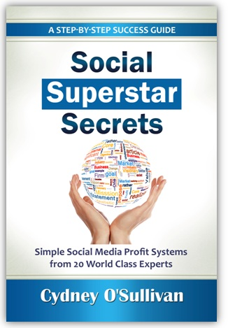 Social Superstar Secrets book